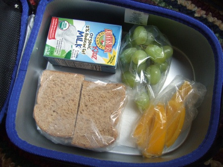 090402lunchbox Packing Lunch for Kindergarten